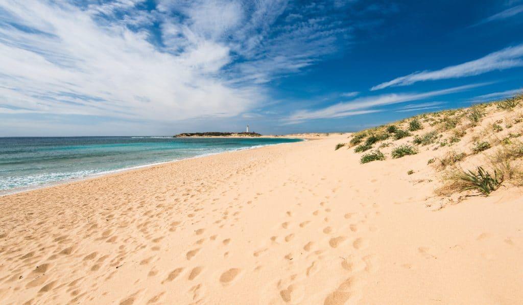 ¿Cómo iremos a las playas este verano?