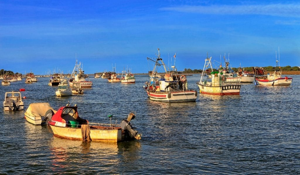 Pescadores de Punta Umbría donan más de 1200 kilos de pescado