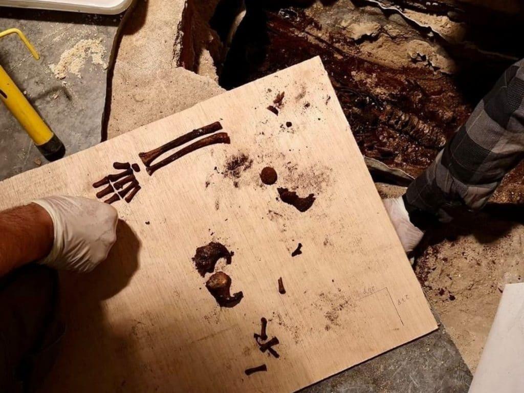 Esto es lo que se sabe sobre los restos de la niña hallados en el Alcázar