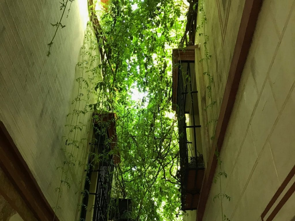 Calle Verde: un rincón de magia e historia en la Judería