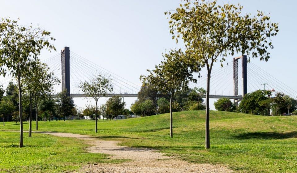 Sevilla tendrá un anillo verde de 42 kilómetros