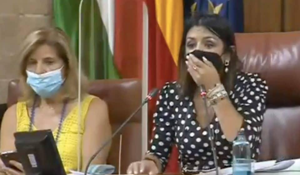 [Vídeo] Una rata interrumpe la sesión del Parlamento andaluz