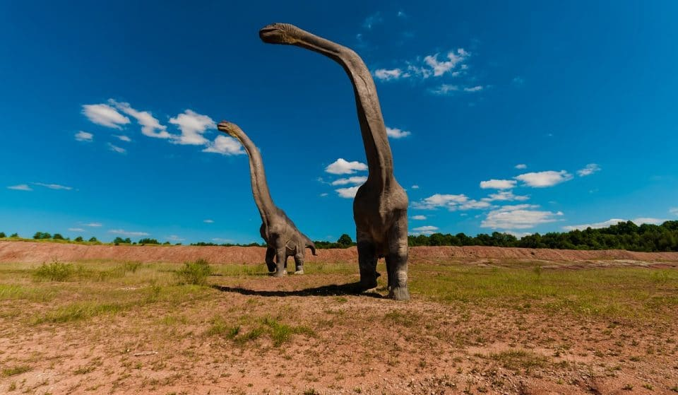 A giugno potrai fare un tuffo nella Preistoria con Dinosaurs Park