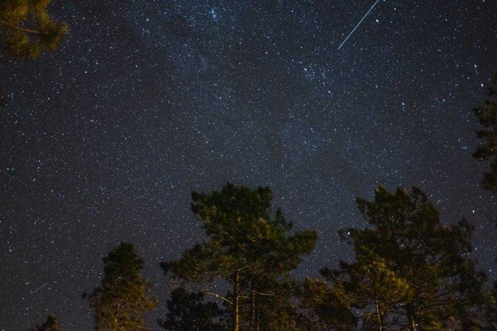 stelle cadenti luglio