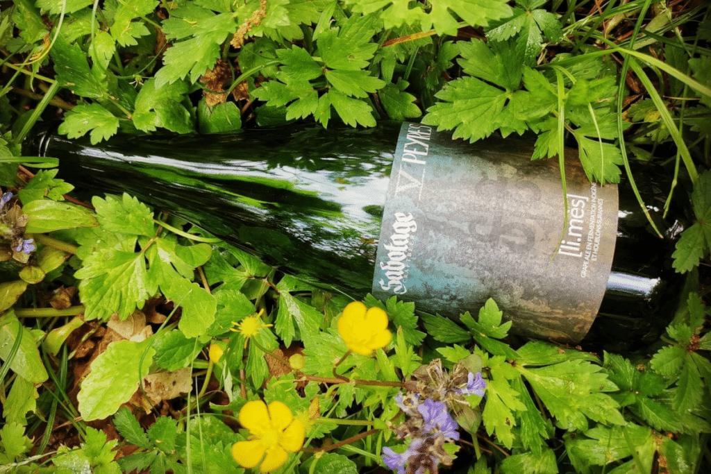Ces Brasseurs Toulousains imaginent une Bière à base de Vin !