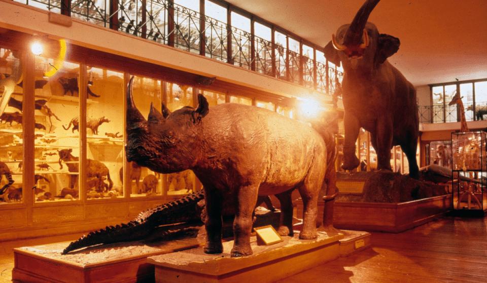 Musées, Théâtres, Salles de Spectacles… Découvrez ici le calendrier de réouverture des établissements culturels à Toulouse