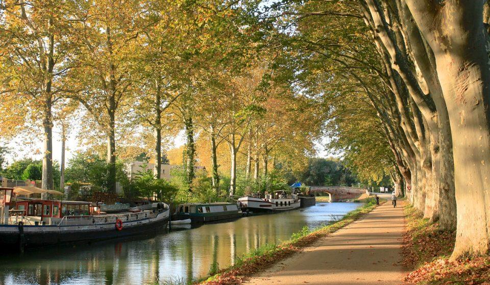 Une journée d'automne à Toulouse!