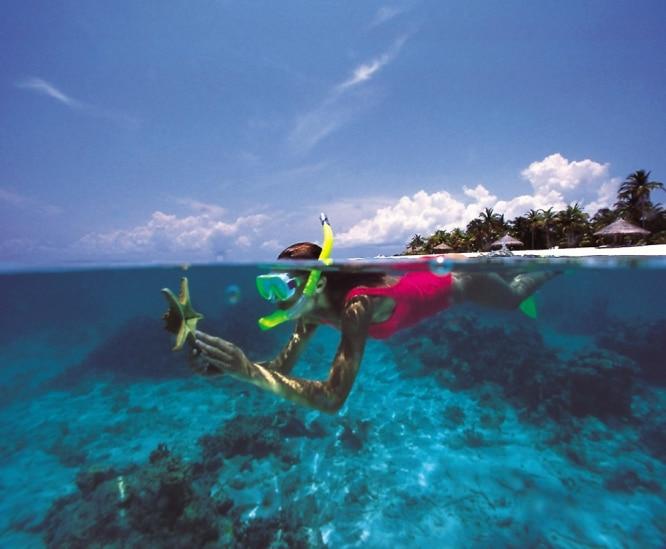 Amphilife-Snorkel