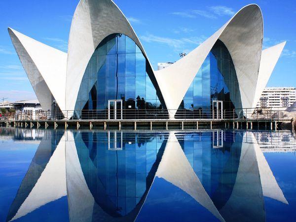 No busques más: estas 16 cosas sólo pasan en Valencia