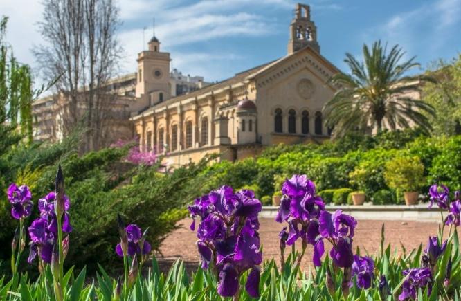 Flora, fauna y…: Planes para esta primavera en Valencia
