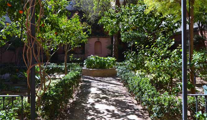 jardin del palau de forcallo