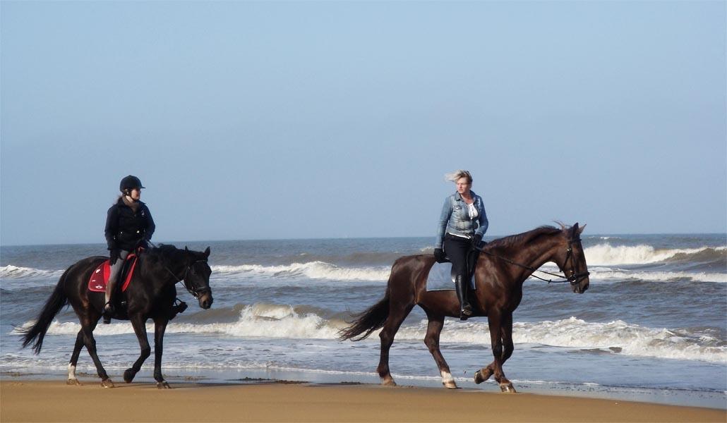 Con caballos y a lo loco: rutas a caballo por Valencia