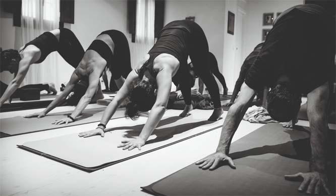 yoga academia