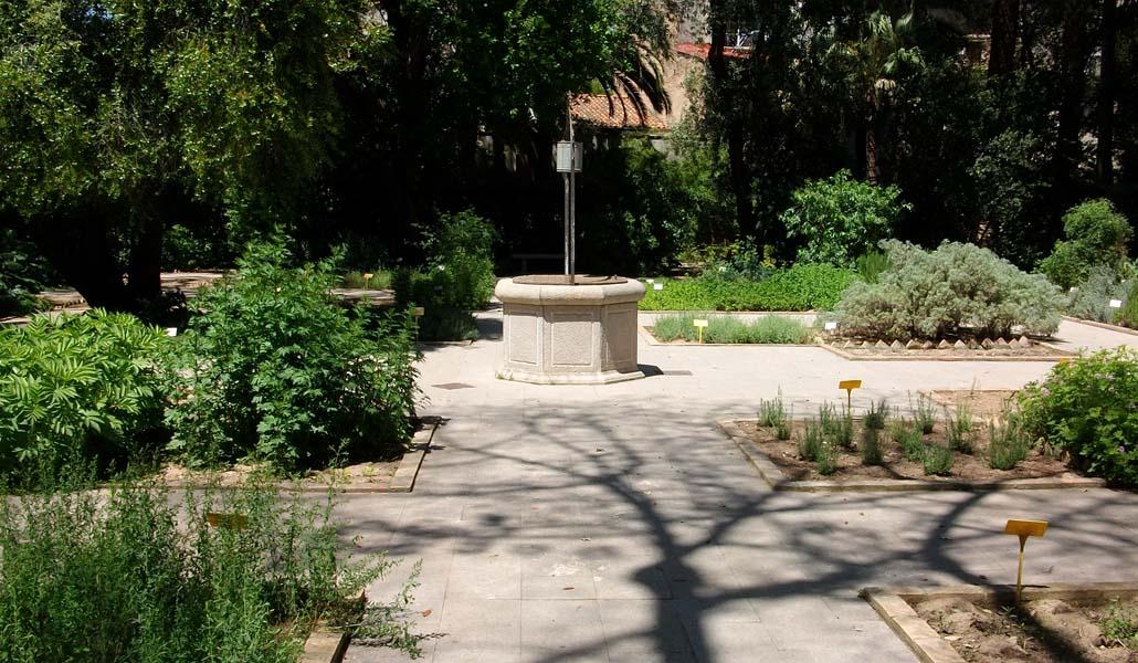 Un nuevo pulmón en el Jardín Botánico