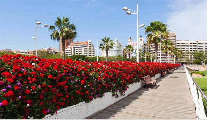 pont de les flors