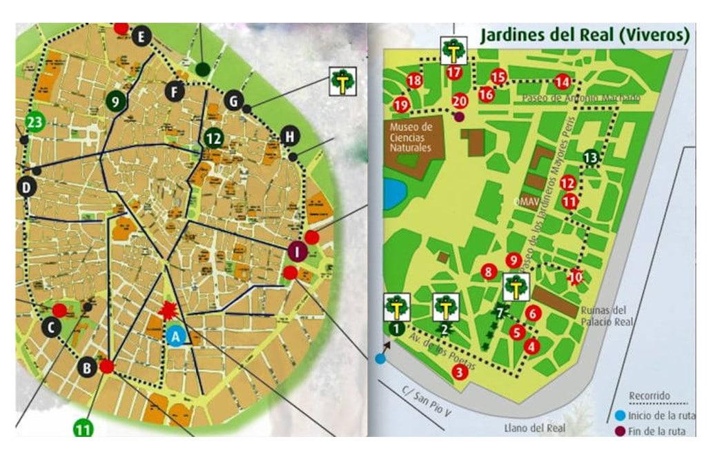 ruta arboles 1 valencia