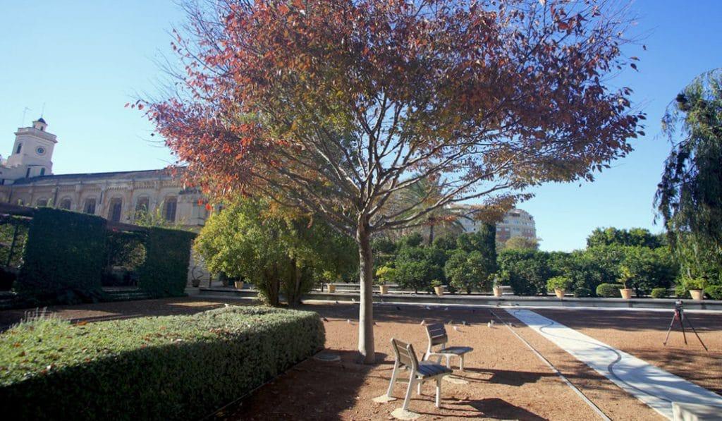 jardín de las Hespérides 2