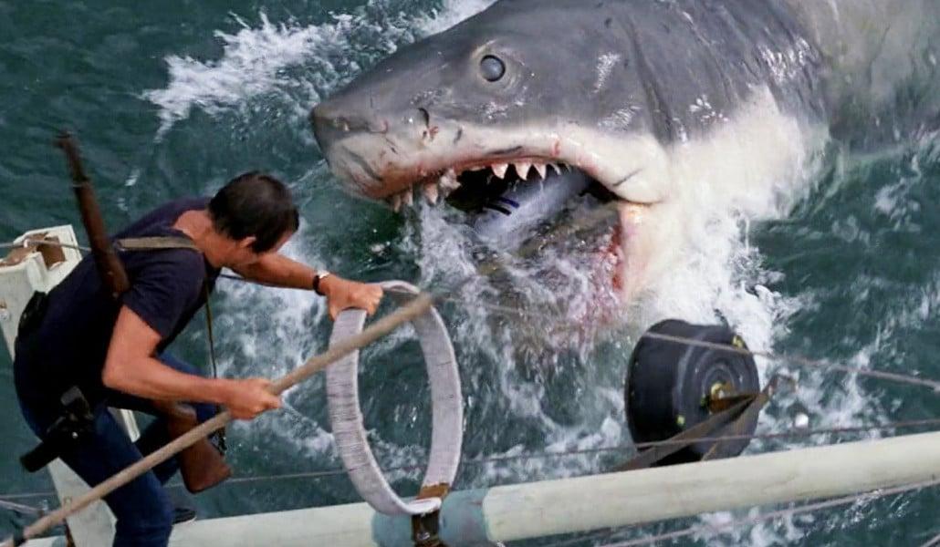 Ahora puedes ver la película 'Tiburón' dentro del mar