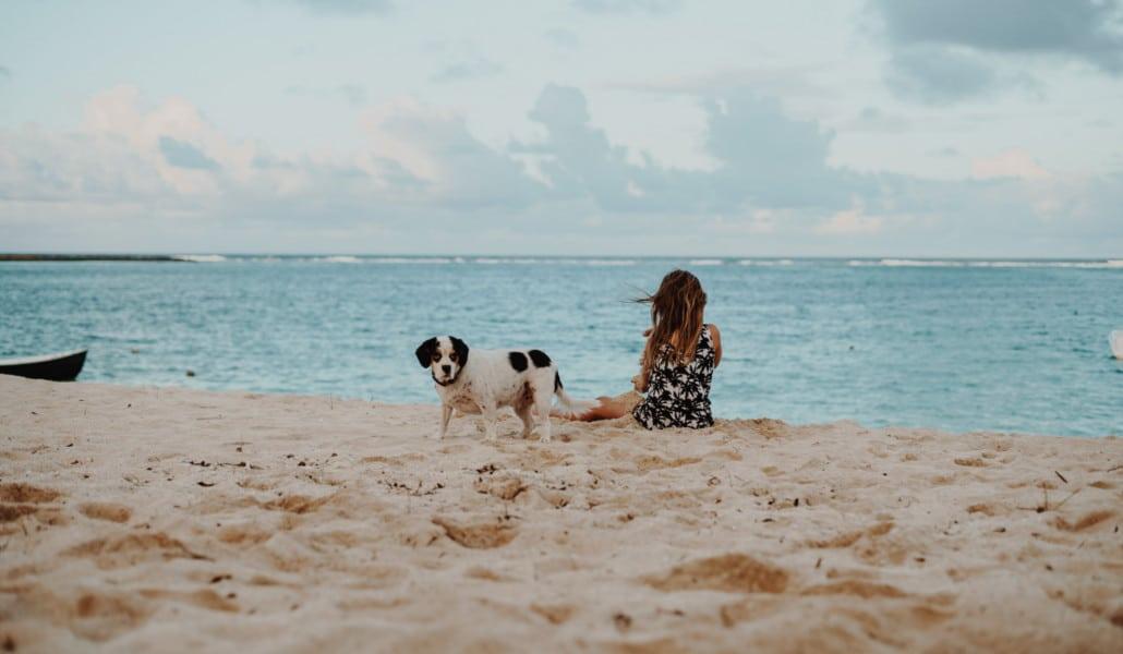 playas perros valencia
