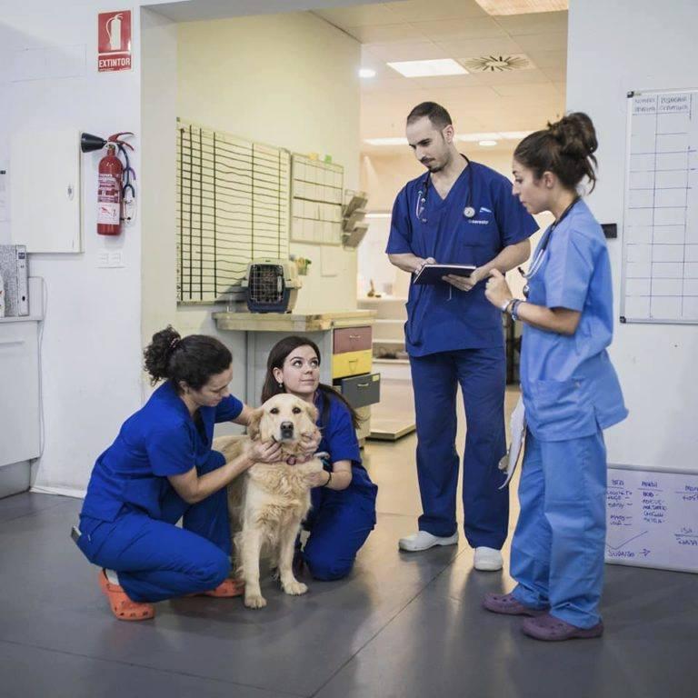 Hospital Valencia Sur Jorge Llinás