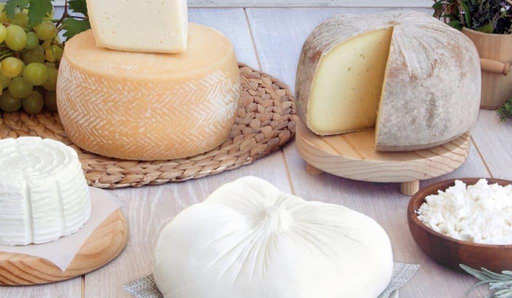 Feria del queso artesano: prueba los mejores quesos valencianos