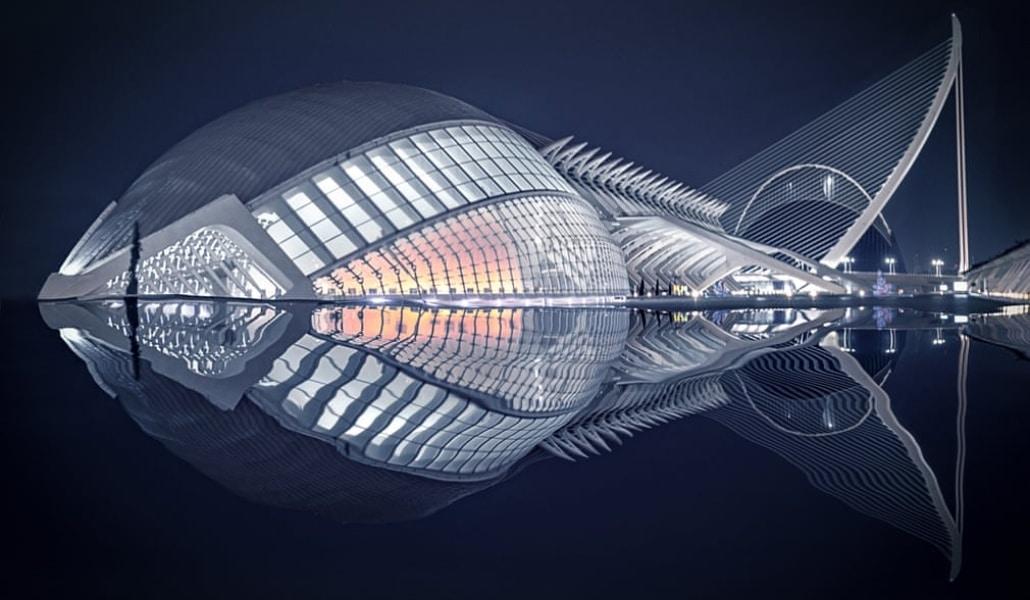 El ojo de Calatrava gana un concurso de fotografía al convertirse en pez