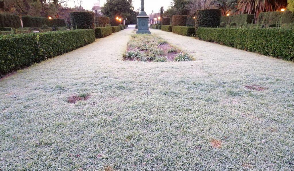 El frío escarcha el parque de Viveros de Valencia