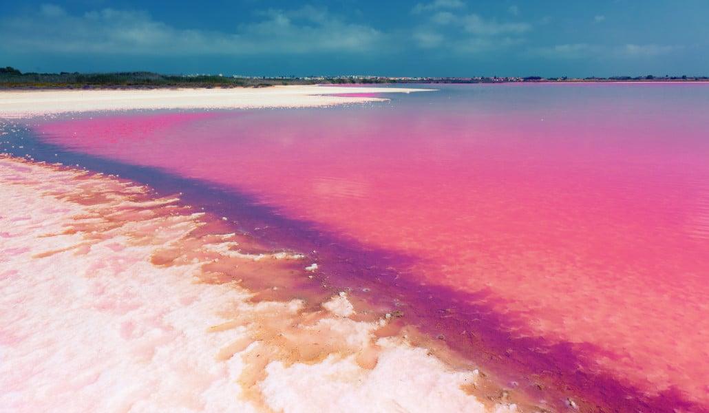 La laguna rosa de Torrevieja: un espectáculo visual