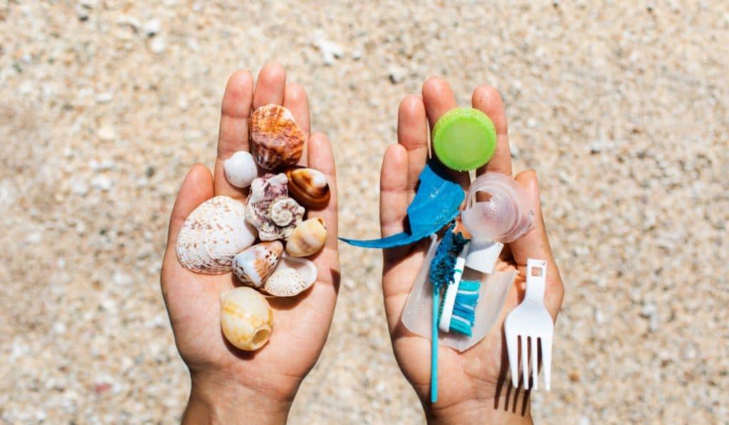 recogida plasticos malvarrosa