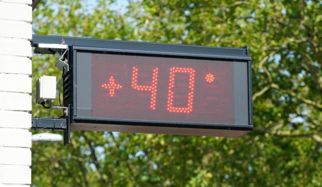 Llega una ola de calor con temperaturas de hasta 40 grados