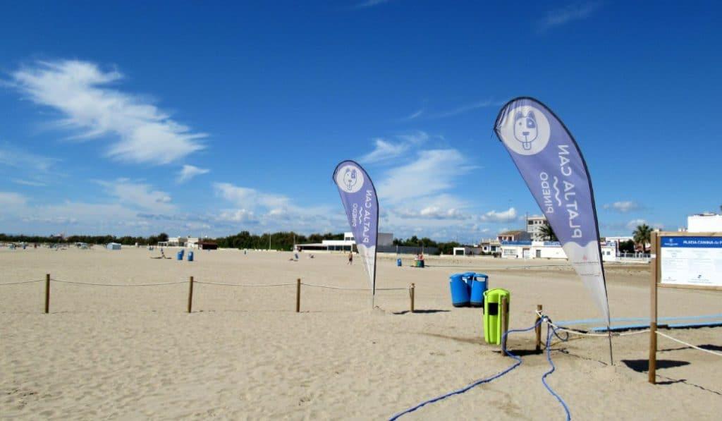 La playa para perros de Pinedo ya está abierta