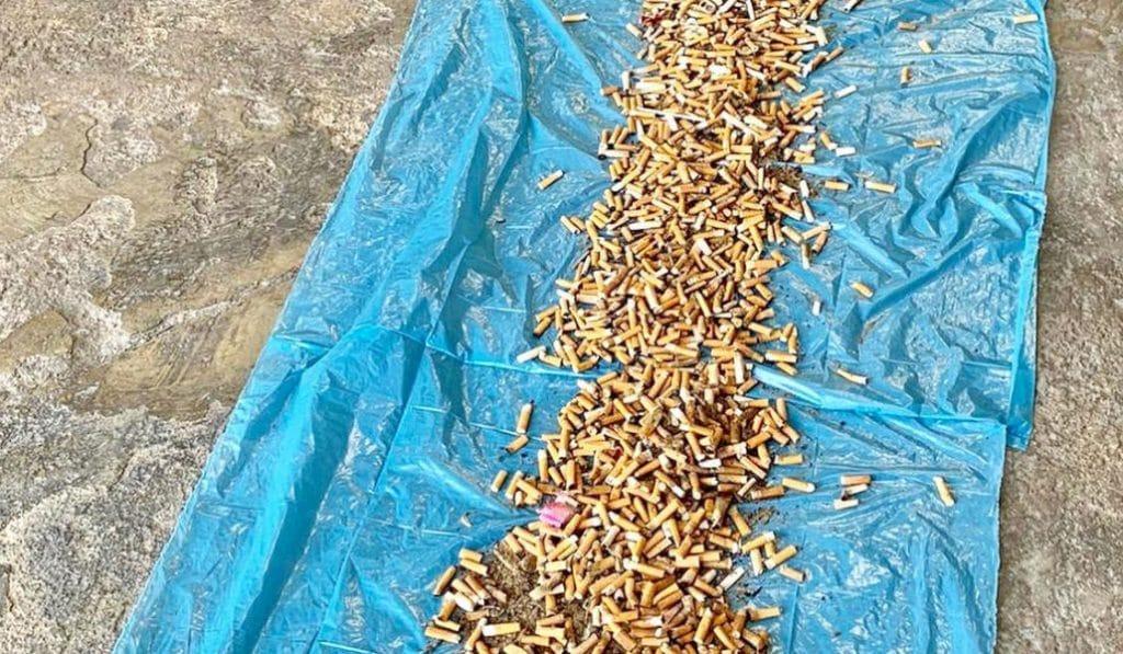 Recogen 11.550 colillas en la playa del Cabanyal