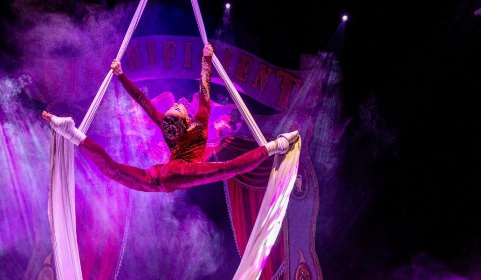 'Ante El Magnífico': revive los orígenes del circo moderno en Valencia