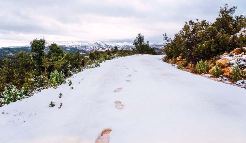 La Comunitat se prepara para temperaturas bajo cero y grandes placas de hielo