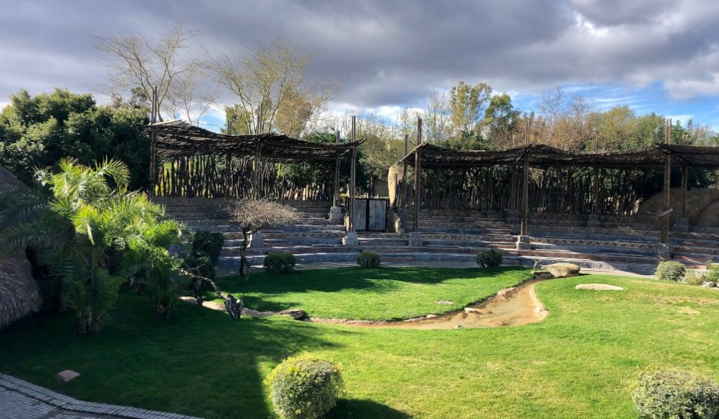 El Bioparc de Valencia se iluminará con velas para celebrar conciertos al aire libre