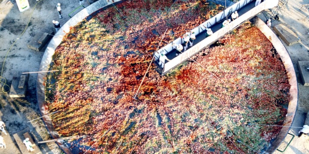 La paella más grande del mundo la hizo un valenciano en Madrid