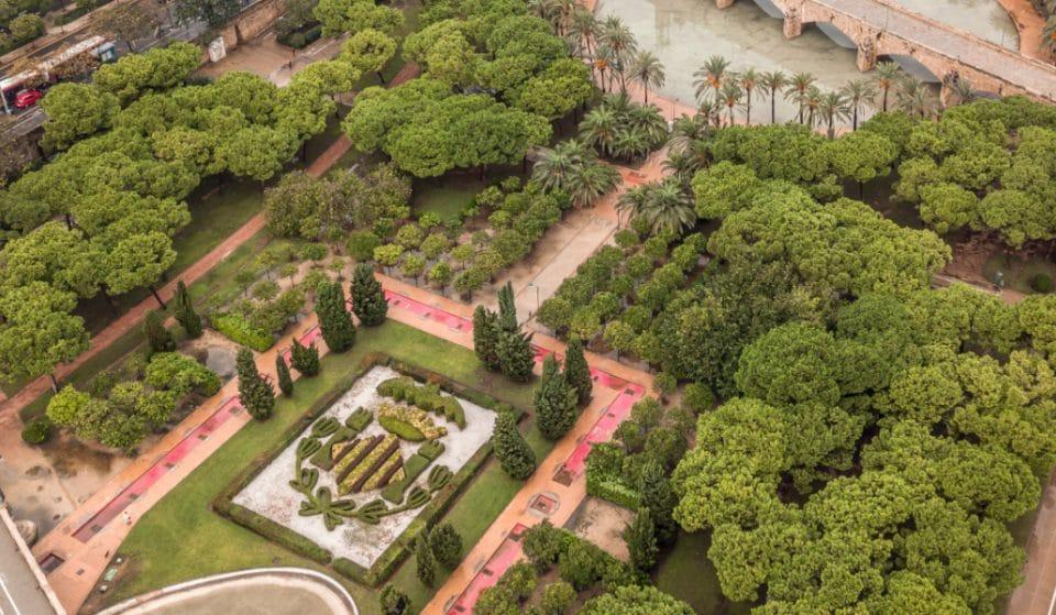 El escudo de Valencia hecho con flores: un secreto bajo el puente de Aragón