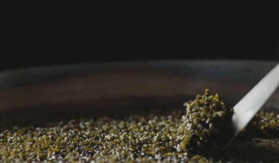 Así es el arroz del Chef del Mar que podría viajar al espacio