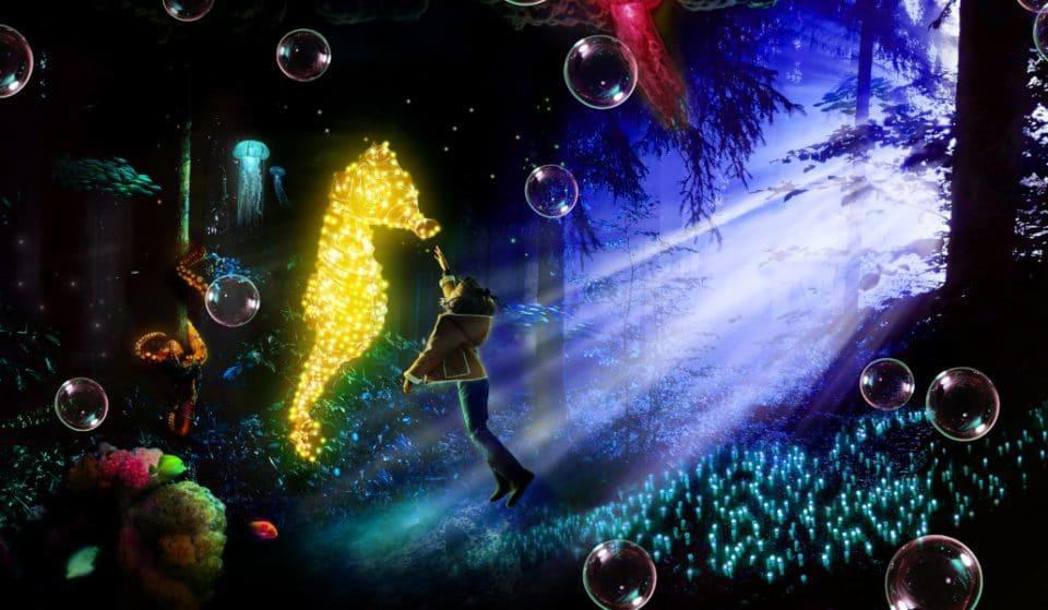 Naturaleza Encendida: llega a Valencia el espectáculo de luces navideñas que arrasa en Madrid